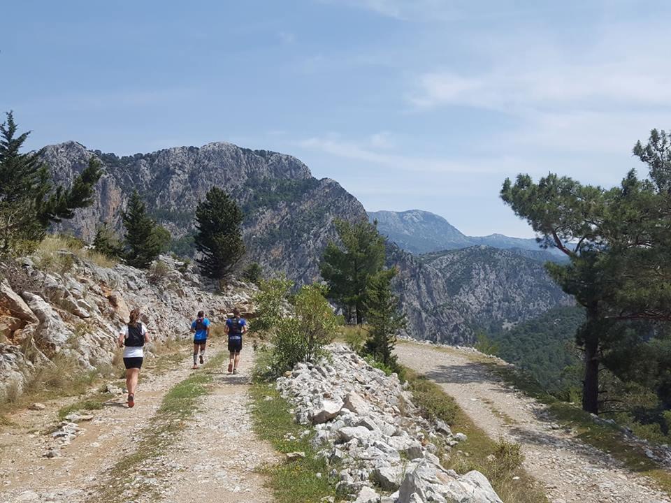 Sweden Runners resor. Löparresor 2018