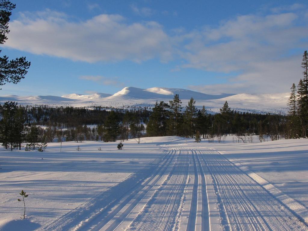 Swedeb Runners Skidläger Grövelsjön