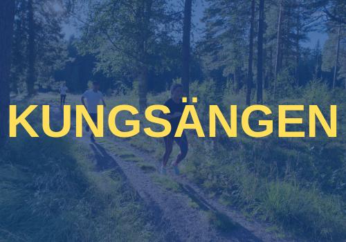 Sweden Runners Kungsängen
