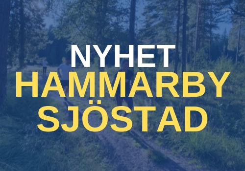 Hammarby Sweden Runners Löpargrupp