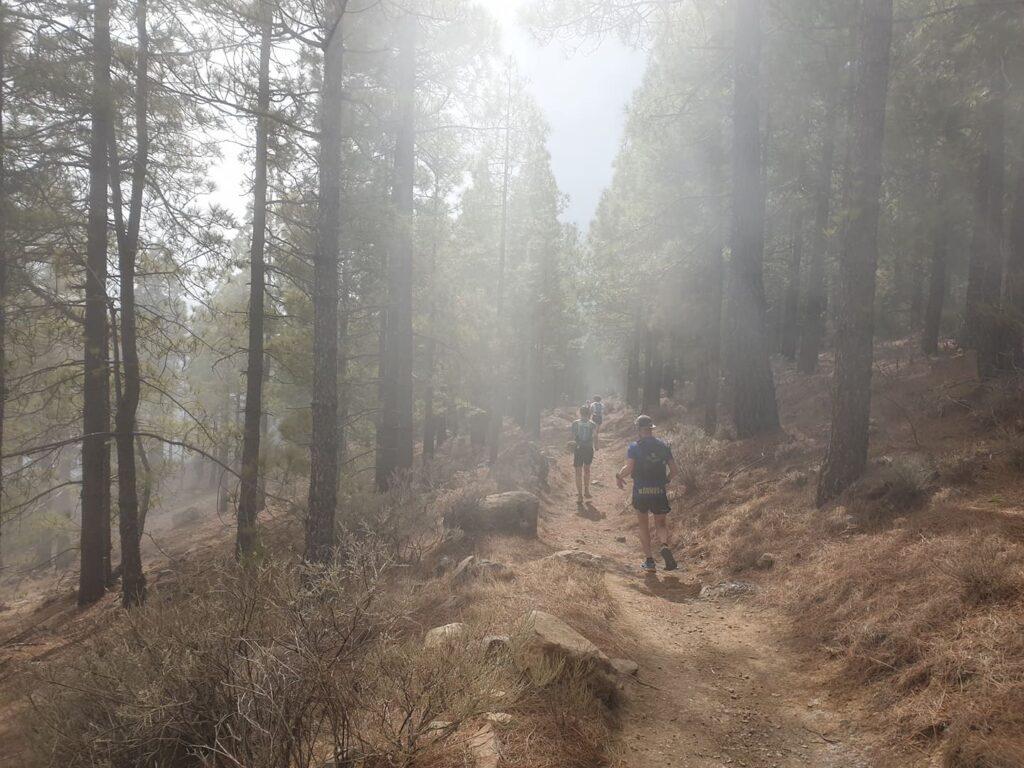Sweden Runners Gran Canaria Löparresa
